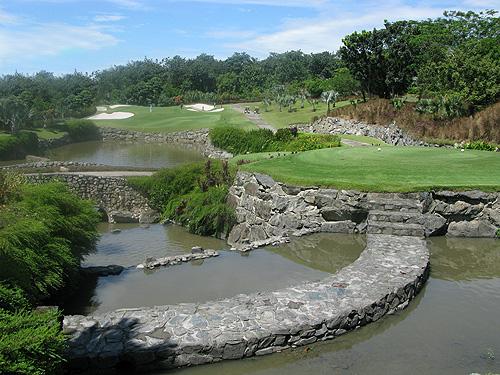 Palm Garden is aangelegd in een voormalige palm plantage