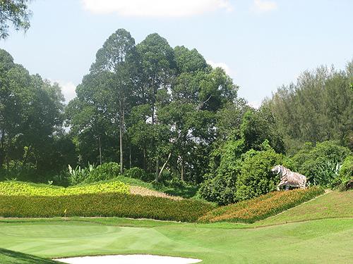 Hier liep vroeger de Maleisische tijger rond